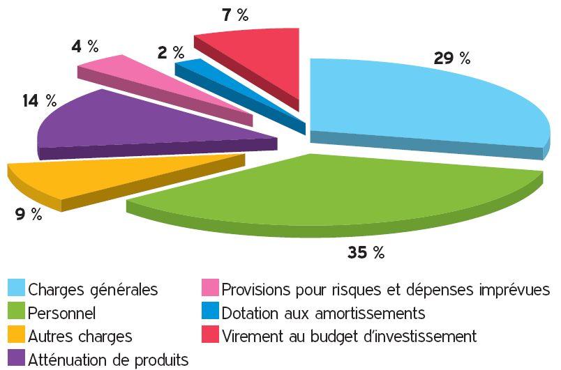 Diagramme : Dépenses 2017
